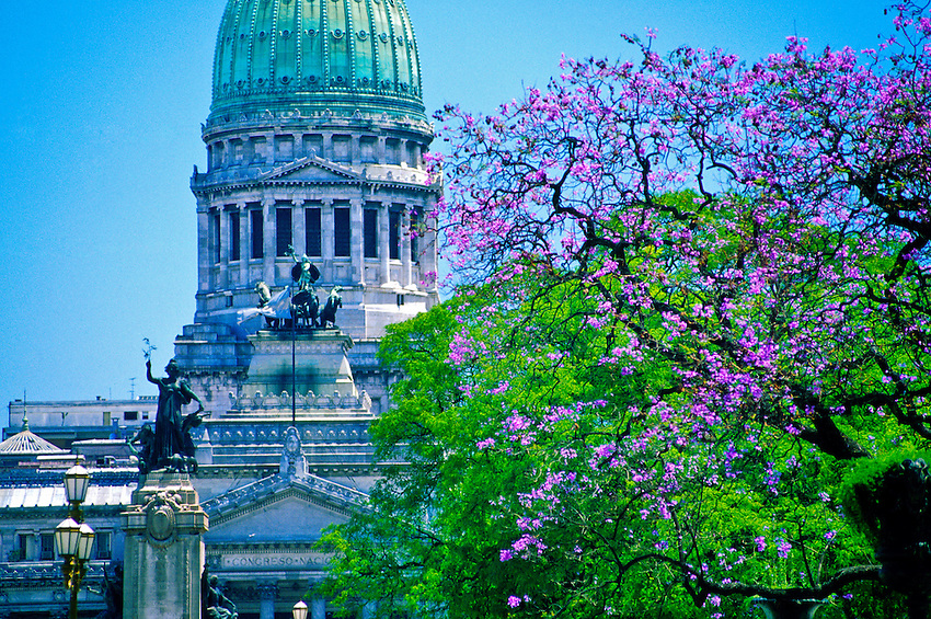 View down Avenida de Mayo with Jacaranda trees in bloom looking to the Congreso (Parliament), Buenos Aires, Argentina