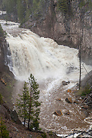 Gibbon Falls during spring runoff