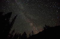 Shoshone National Forest Wyoming, Milky way in night sky
