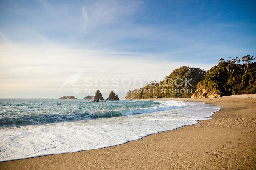 Westland Beach , South Island