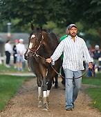 Rachel Alexandra, with Shaun Bridgmohan up, works at 6 am over the Oklahoma training track at Saratoga on Monday, Aug. 2, 2010.