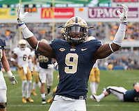 Notre Dame Fighting Irish at Pitt Panthers 11-07-15