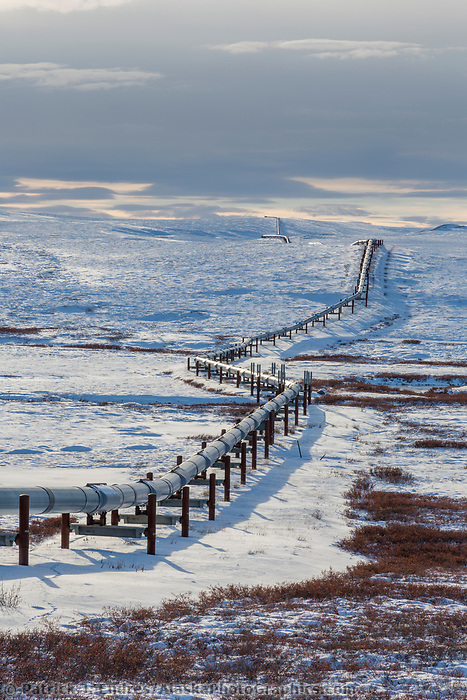 Pipeline winds across the snow covered tundra of Arctic, Alaska.