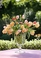 A glass vase is filled with an informal arrangement of coral-pink tulips