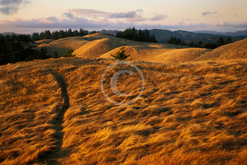 California, Marin County, Mount Tamalpais State Park