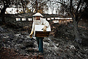 Beekeeper Giannis Tassopoulos surveys the damage to his beehives after a wild fire swept through his village razing everything that stood in its path; WIth the surrounding countryside practically destroyed his bees won't be able to find any flowers from which to make their honey;