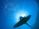 Sunshine Surf.