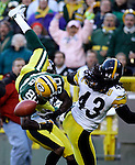 Green Bay's Donald Driver drew a pass interference call on the Steelers in the 2nd quarter. They were given the ball on the Steelers 3-yard line. Steelers Troy Polamalu was covering on the play. .The Green Bay Packers hosted the Pittsburgh Steelers at Lambeau Field Sunday November 6, 2005. Steve Apps-State Journal.