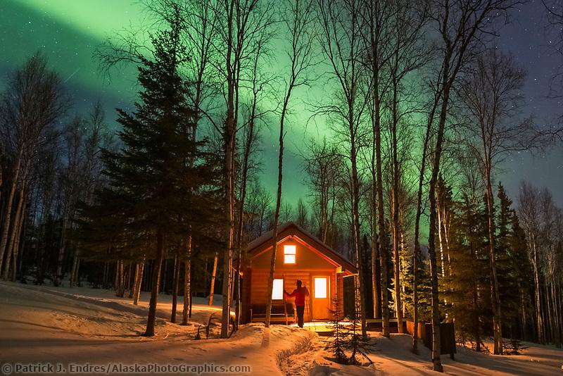 Man watches aurora borealis in a boreal forest in Fairbanks, Alaska.