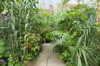 The exotic garden at Great Dixter