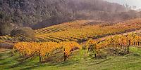 Silverado Autumn