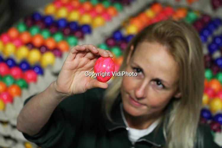 Foto: VidiPhoto..BARNEVELD - Zo vlak voor Pasen is het topdrukte bij veel eier-inpakstations. Zo ook dinsdag bij Eicom in Barneveld. In het Veluwse inpakstation worden echter dit jaar de helft minder gekleurde eieren verwerkt dan andere jaren. Oorzaak zijn de hoge prijzen van de eieren, waardoor consument liever zelf de paaseitjes van kleur voorzien. Doordat alle kippenboeren -volgens Europese regelgeving en onder druk van milieuorganisaties- verplicht zijn om in juni scharreleieren te leveren, is er een enorm tekort ontstaan aan eieren. Alles wat geen scharrelkip is, moet namelijk op dit moment afgeslacht worden..