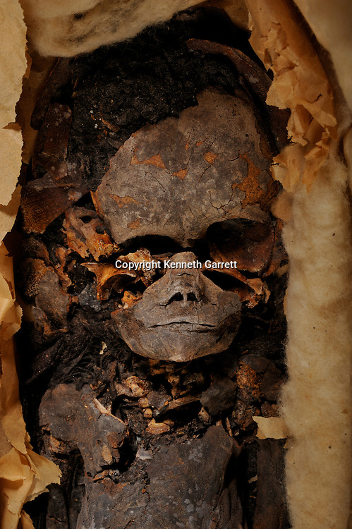 Tut DNA story, Foetus munnies, Children King Tut, from KV62, Currently at Qasi Aini Hospital, Cairo University, one 5 months old, one 7 months old, both Female