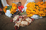 A Native nahuatl vchild takes a break after his family bought cempaxochitl flowers (flowers of the deads) in the tianguis in Acaxochitlan, in northern state of Hidalgo, during the festivities of the Day of the Deads. Hundreds of Native villages pay homage to their deads on the eve of November 2 as a tradition since the preHispanic times. Photo by Heriberto Rodriguez