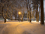 Idaho, Northern, Kootenai County, Coeur d'Alene. Coeurd'Alene City Park at night in downtown Coeur d'Alene in winter.