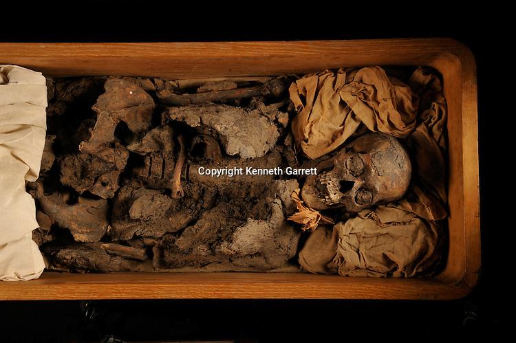mm7864; Tutankhamun; 18th Dynasty; New Kingdom; the Egyptian Museum; Cairo; DNA; sample, Mummy, Amenhotep III, Tut Grandfather