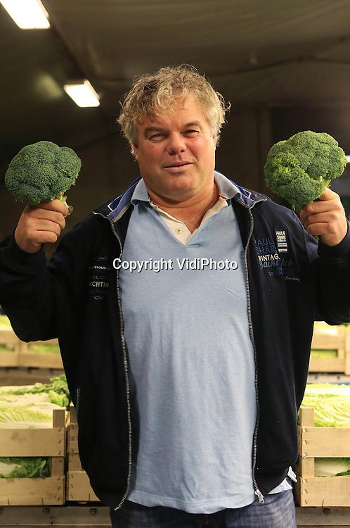 Foto: VidiPhoto..ZEELAND - Teeltmanager René Verbakel met broccoli, op zijn bedrijf: Teeltbedrijf Compliment BV..