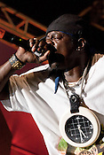 Public Enemy's Flava Flav during their headline performance in City Plaza during the Hopscotch Music Festival in Raleigh, N.C., Sat., Sept. 11, 2010.