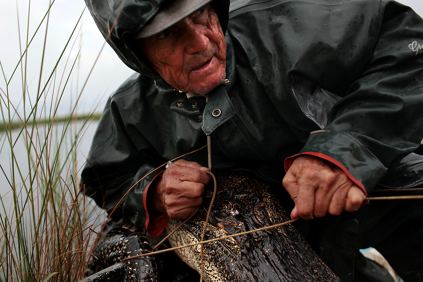 Thomas gator, 72, hunting from Delacroix Island, LA August 31, 2010.  last week he finished crabbing because the price dropped to $1.25 for the 1's and it wasn't worth the bait and gas to continue. Thomas is one of the only Delacroix fishermen not working for BP.