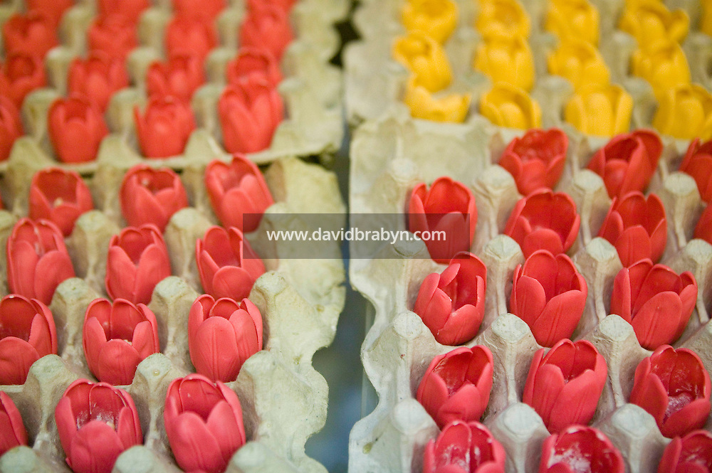 6 April 2006 - New York City, NY - Freshly made edible tulips that will be used to decorate cakes dry out at Sylvia Weinstock Cakes in New York City, USA, 6 April 2006. The owner, Sylvia Weinstock is known as the queen of wedding cakes in New York.
