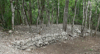 White Road or Sacbe, one of the forty roads or pathways discovered on the site, most impressive network of roads yet found in the pre-Hispanic world, Quintana Roo Mayan site, 600-900 AD, Coba, Mexico. Picture by Manuel Cohen