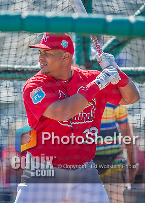6 March 2016: St. Louis Cardinals catcher Brayan Pena takes batting practice prior to a Spring Training pre-season game against the Washington Nationals at Roger Dean Stadium in Jupiter, Florida. The Nationals defeated the Cardinals 5-2 in Grapefruit League play. Mandatory Credit: Ed Wolfstein Photo *** RAW (NEF) Image File Available ***