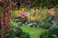 Edelson - autumn