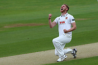 Jamie Porter of Essex celebrates taking the wicket of James Vince during Essex CCC vs Hampshire CCC, Specsavers County Championship Division 1 Cricket at The Cloudfm County Ground on 20th May 2017