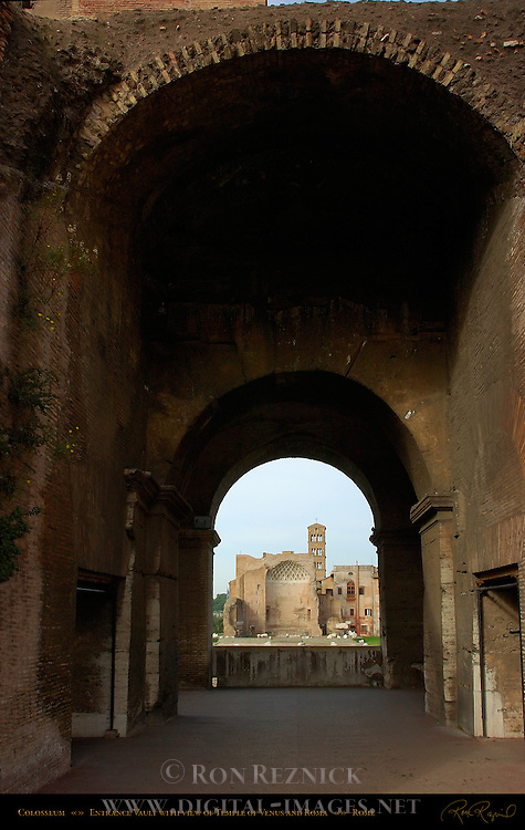Entrance Vault with view of Temple of Venus and Roma Colosseum Rome