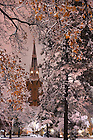 Basilica spire on a snowy Thanksgiving night, Nov. 22, 2007