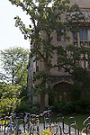 Architecture and bike rack on the University of Chicago campus, Chicago, Illinois, IL, USA