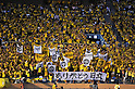 Reysol fans,  JULY 23, 2011 - Football : 2011 J.LEAGUE Division 1,6th sec between Kashiwa Reysol 2-1 Kashima Antlers at National Stadium, Tokyo, Japan. (Photo by Jun Tsukida/AFLO SPORT) [0003]
