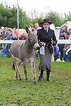 Donkey Classes at the Great Yorkshire Show 2020