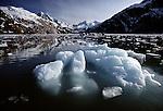 Glacier Bay, Glacier Bay National Park and Preserve, Alaska