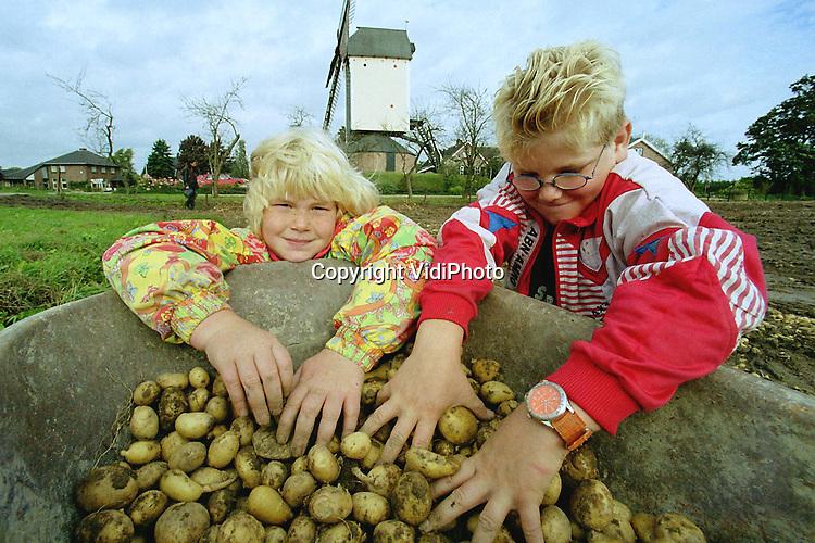Foto: VidiPhoto..HERVELD - Daar bij die molen, liggen piepers verscholen. De achtjarige Sharona van Schaik uit Herveld en haar tienjarige broertje William rapen zich .rijk. Hopen ze. Op een zojuist geoogst aardappelperceel onder de Herveldse molen De Vink, mogen zij de overgebleven piepers rapen. De veelal kleine .aardappeltjes gaan in de kruiwagen en zijn bestemd voor thuis en voor de buren..