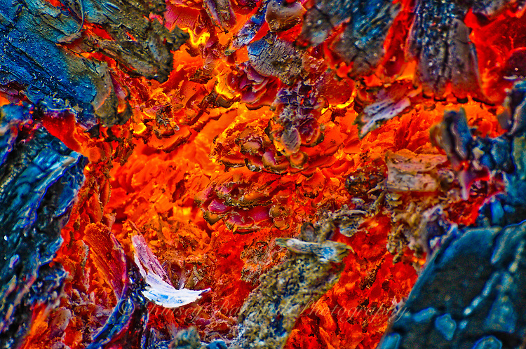 &quot;LONESOME DOVE&quot;<br /> <br /> The hot glowing coals from a slash pile in the forest create a natural and colorful work of abstract art. One might even image a lone white dove on the left near the bottom winging its way across a mottled red sky.
