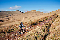 Female hiker hiking in Brecon Beacons national park, Wales