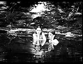 Girls cool off in the creek on a hot summer day.