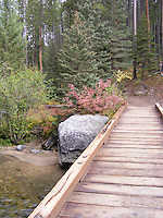 Bridge to Trail