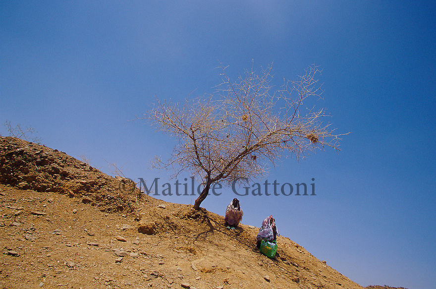 Eritrea - Debub- Women sitting under the shade of a dead tree. As a result of 30 years of war for independence against Ethiopia (from 1961 to 1991) and another 3 years from 1997 to 2000, there are 50,000 Eritreans currently living in internally displaced (IDP) camps throughout the country. These IDPs have fled three times in the last 10 years, each time because of renewed military conflict. They lived in relatives' homes when lucky enough, but mostly, the fled to the mountains, where they attempted to do what Eritreans do best, survive. Currently there is no Ethiopian occupation in Eritrea, but landmines prevent the IDPs from finally going home. .It is estimated that every Eritrean family lost two or three members to the war which makes the reality of the current emergency situation even more painful for Eritreans worldwide. Currently, the male population has been decreased dramatically, affecting the most fundamental socio-economic systems in the country. Among the refugee population, an overwhelming majority of families are female-headed, severely affecting agricultural production. For, IDPs in particular, 80% of households are female-headed..The unresolved border dispute with Ethiopia remains the most important drawback to Eritrea's socio-economic development, as national resources (human and material) continue to be prioritized for national defense. Eritrea is vulnerable to recurrent droughts and variable weather conditions with potentially negative effects on the 80 percent of the population that depend on agriculture and pastoralism as main sources of livelihood. The situation has been exacerbated by the unresolved border dispute, resulting in economic stagnation, lack of food security and increased susceptibility of the population to various ailments including communicable diseases and malnutrition..