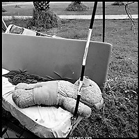 A teddy bear lies on a swing in the first kibbutz in Israel, 1996.  .Part of SCARS series. Photo Greg Marinovich / South