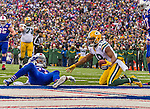 14 December 2014: Green Bay Packers wide receiver Randall Cobb receives a pass and gains 11 yards to the one hardline in the second quarter against the Buffalo Bills at Ralph Wilson Stadium in Orchard Park, NY. The Bills defeated the Packers 21-13, snapping the Packers' 5-game winning streak and keeping the Bills' 2014 playoff hopes alive. Mandatory Credit: Ed Wolfstein Photo *** RAW (NEF) Image File Available ***