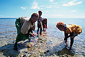 Girls from the village of Kontu clean a dolphins intestines in the reef shallows..Kontu, New Ireland Province, Papua New Guinea;