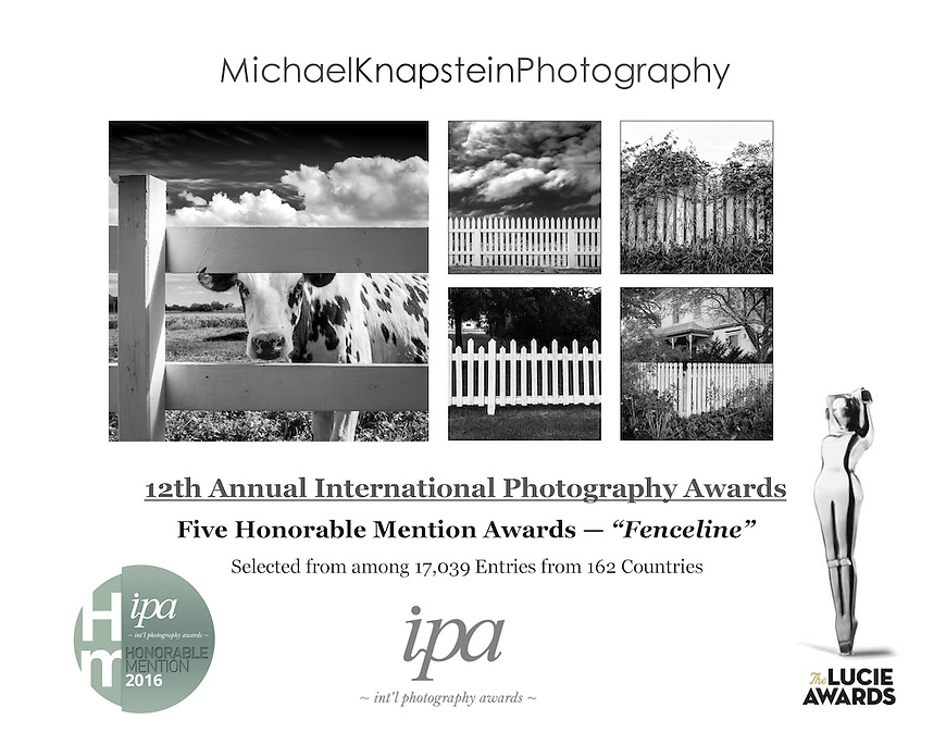 Five photographs by Michael Knapstein received Honorable Mention Awards in the 12th International Photography Awards from the Lucie Foundation. His work was selected from among more than 17,000 entries from 162 countries.