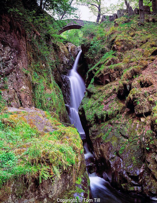 Aira Force Waterfall  Lake District National Park, England  United Kingdom  afternoon May