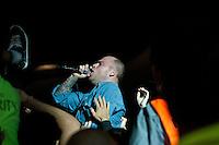 Soundwave - 2011