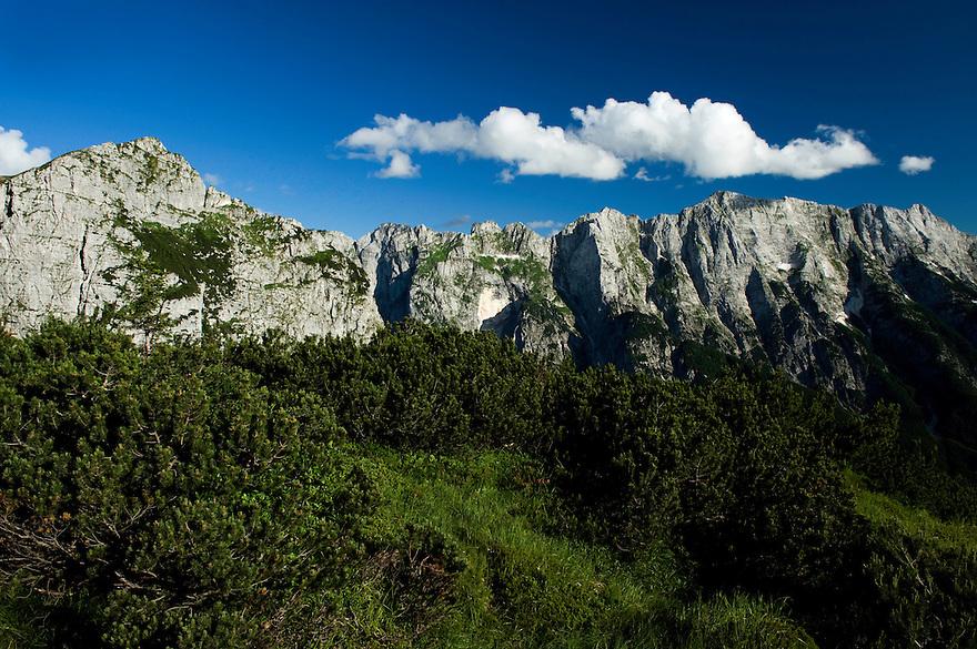Mountain Range, Julian Alps<br /> Triglav National Park, Slovenia<br /> July 2009