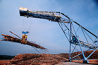 Logs of wood being lifted by a crane at a paper mill.