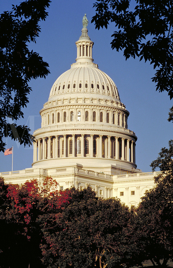 The U.S. Capitol building, Washington, DC. government, Tourism. Washington DC USA.