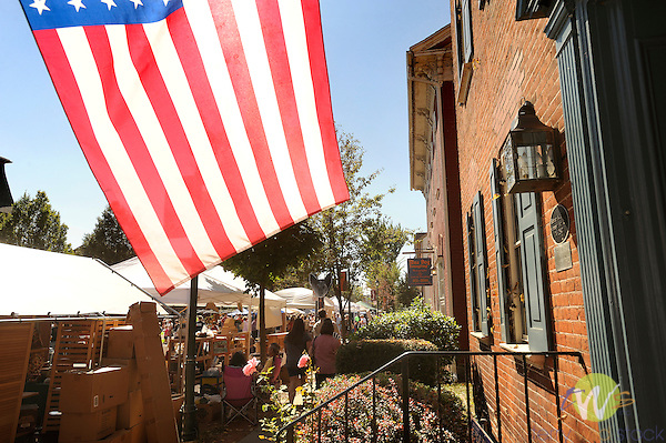 32nd Annual Selinsgrove Market Street Festival with American Flag